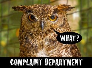 Complaining Owl