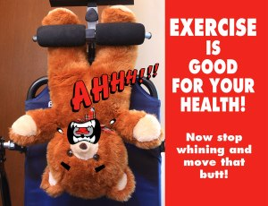 Exercise Bear