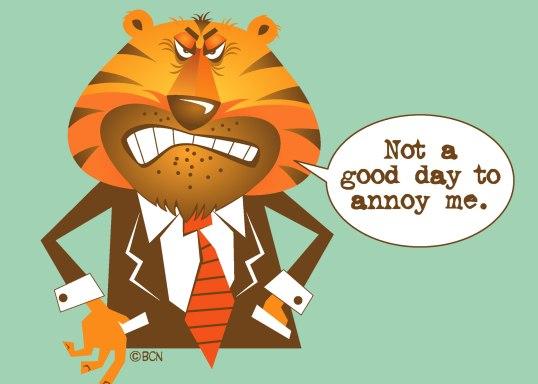 Grumpy Tiger