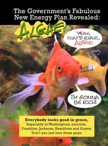 Algae Fish Notebook