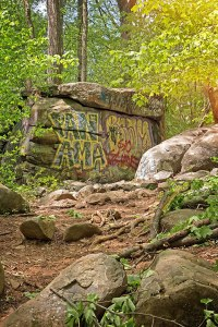 Graffiti Forest
