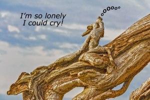 Dragon Driftwood Blog