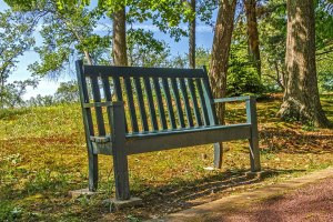Grey's Towers Bench
