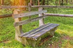 Park Bench Blog