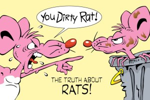 Dirty-Rat-Blog