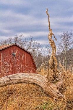 Dry-Wood_Barn
