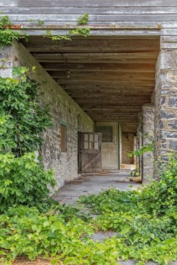 Ivy-and-Barn-Porch