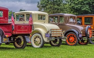 Classic-Ford-Rears-2
