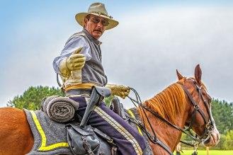 Eckley-Confederate-and-Horse