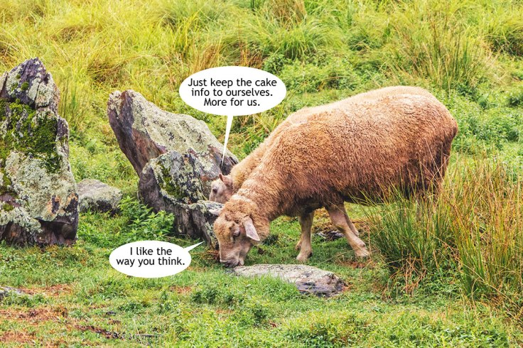 Sheep-Hide-Cake