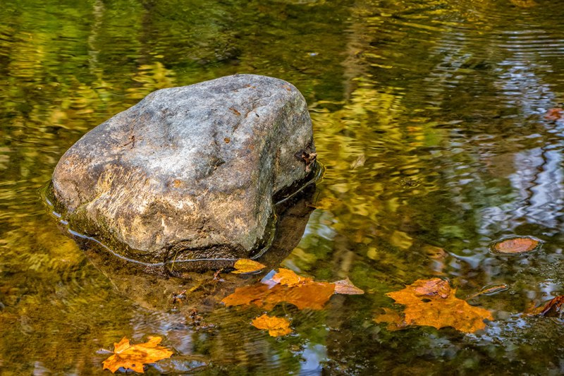 Rock-and-Ripples
