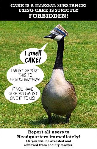 Duck-Guard
