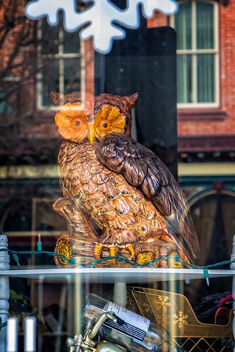 Sad-Owl