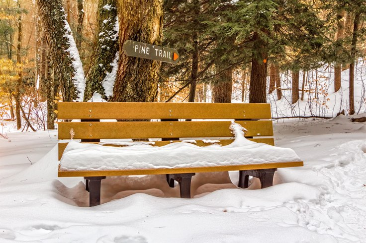 Snow-Bench