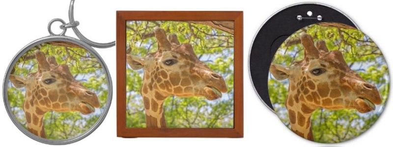 high_giraffe_gifts