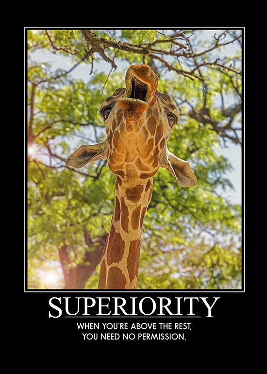 Superior-Giraffe-Card