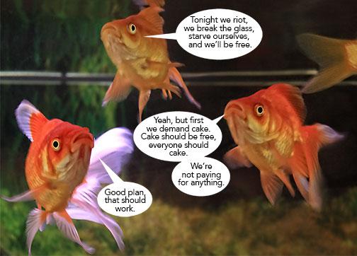 Fish-Plan