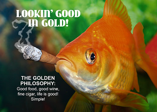 Golden-Goldfish-Card