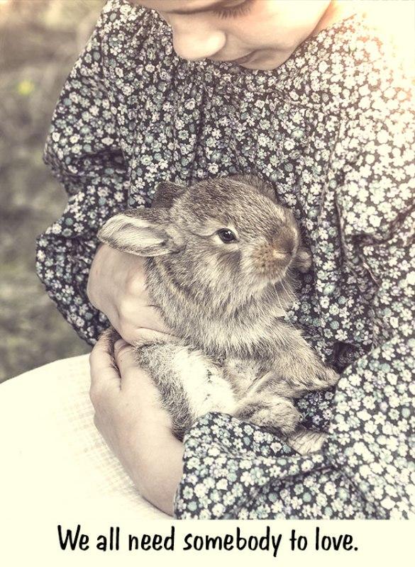 Love-Bunny
