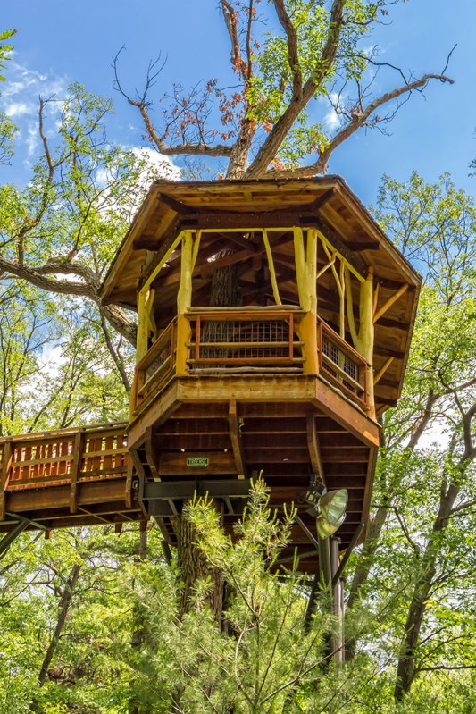 Nay-Aug-Tree-House-1