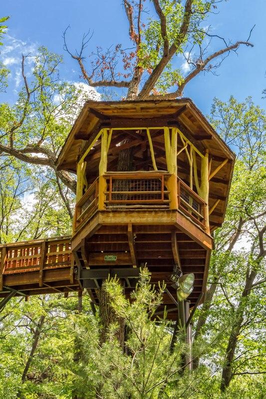 Nay-Aug-Tree-House-1