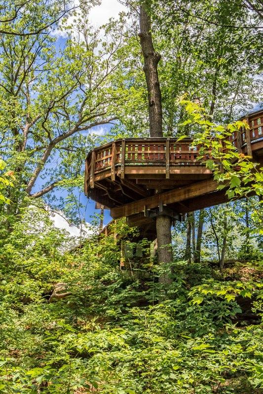 Nay-Aug-Tree-House-3