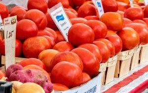 Tomato-Festival-12