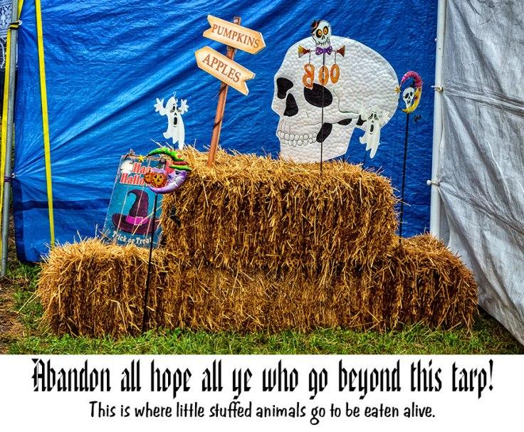 County-Fair-12