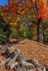 Jim-Thorpe-In-Fall-1