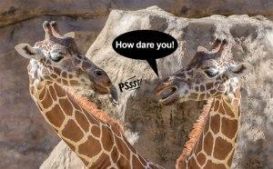 Rude-Giraffes