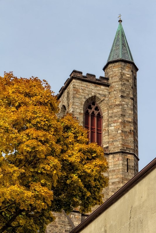 Steeple-and-Yellow-Leaves