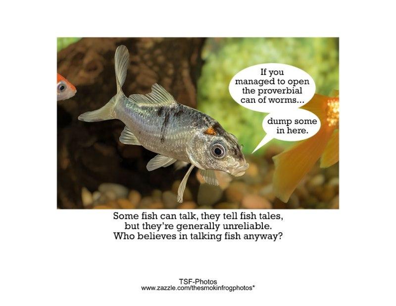 Fish-Wisdom-Back-Cover