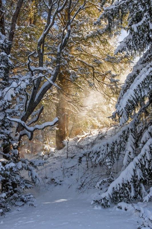 Hickory-Run-Snowfall-1