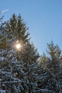 Hickory-Run-Snowfall-4
