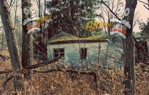 Horror-House-2