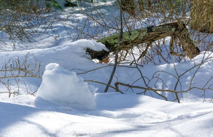 Deep-Snow