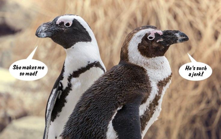 Penguin-Sexists
