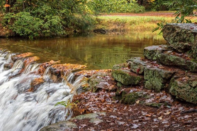 Fall-In-Hickory-Run-1
