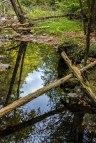 Hornbecks-Waterfalls-1