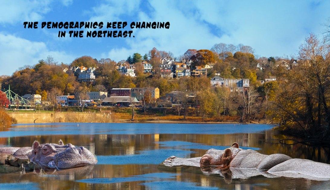 Hippos-Moving-Into-Easton