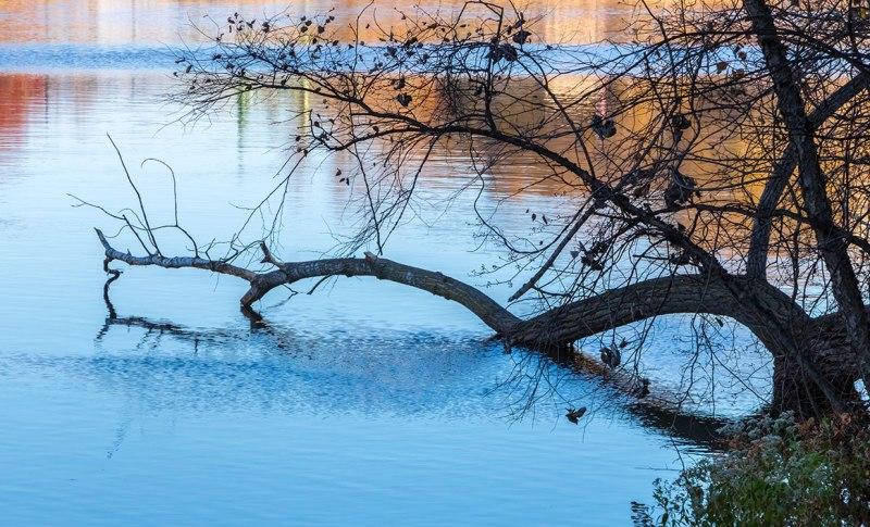 Lehigh-River-1