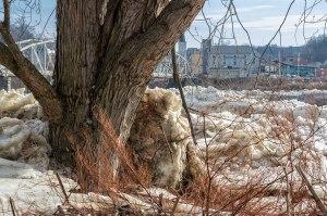 Susquehanna-Ice-Chunks-2
