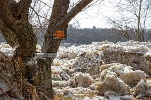 Susquehanna-Ice-Chunks-6