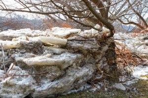Susquehanna-Ice-Chunks-7