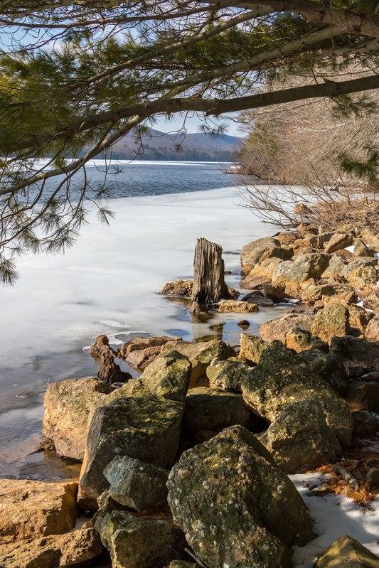 Mauch-Chunk-Lake-Stump-1