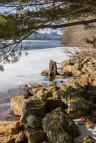 Mauch-Chunk-Lake-Stump-1