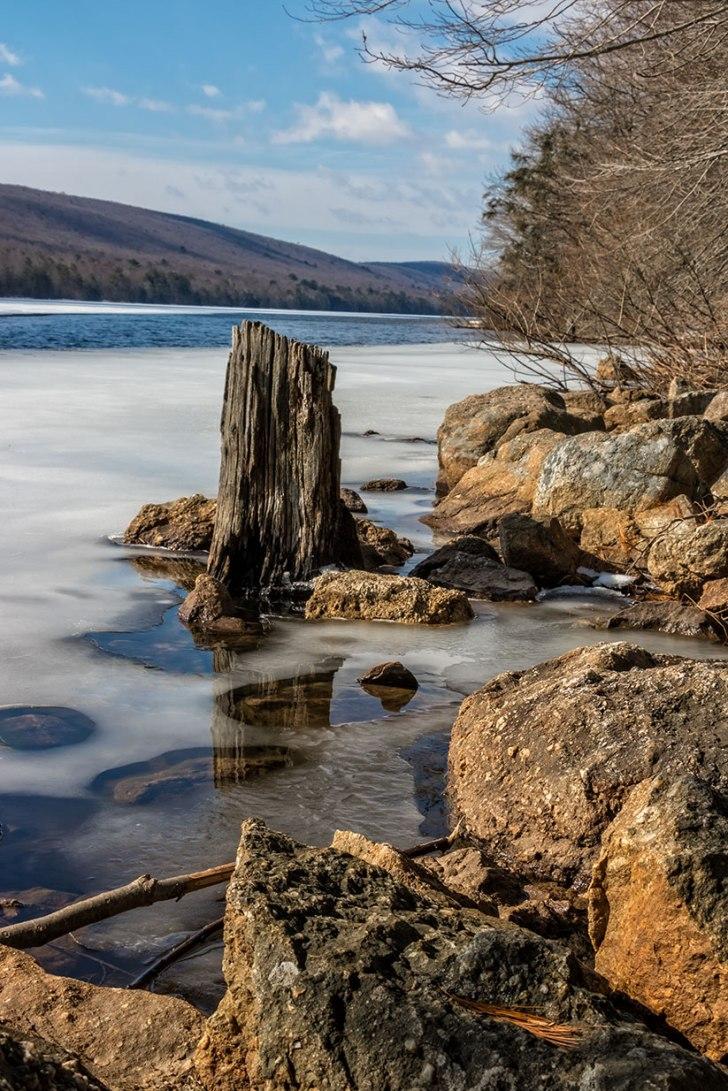Mauch-Chunk-Lake-Stump-3