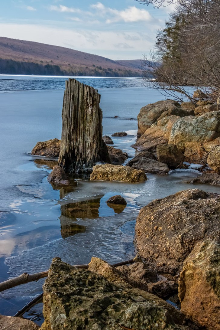 Mauch-Chunk-Lake-Stump-4