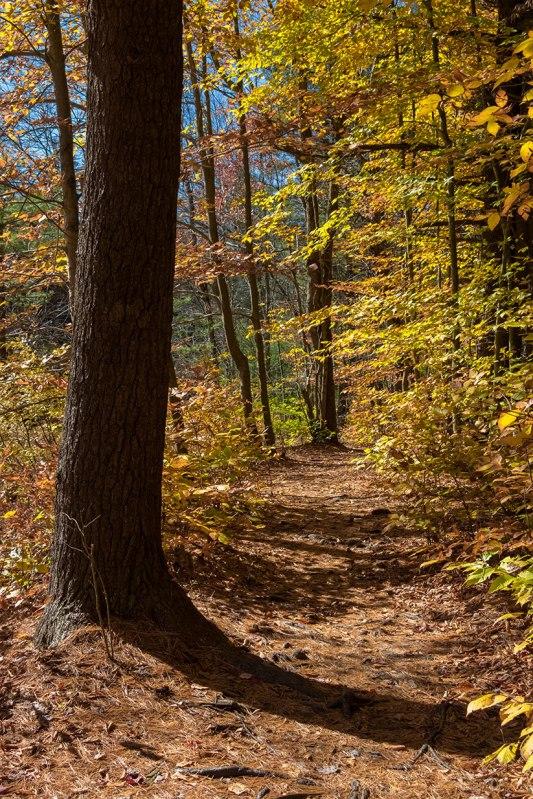 Austin-Blakeslee-Autumn-5