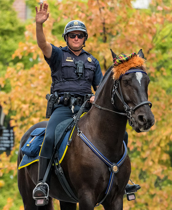 Celtic-Fest-Cop-and-Horse